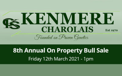 Kenmere Charolais 8th Annual On Property Sale